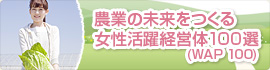 banner2-2.jpg