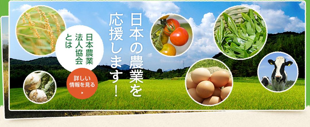 日本の農業を応援します!【日本農業法人とは】
